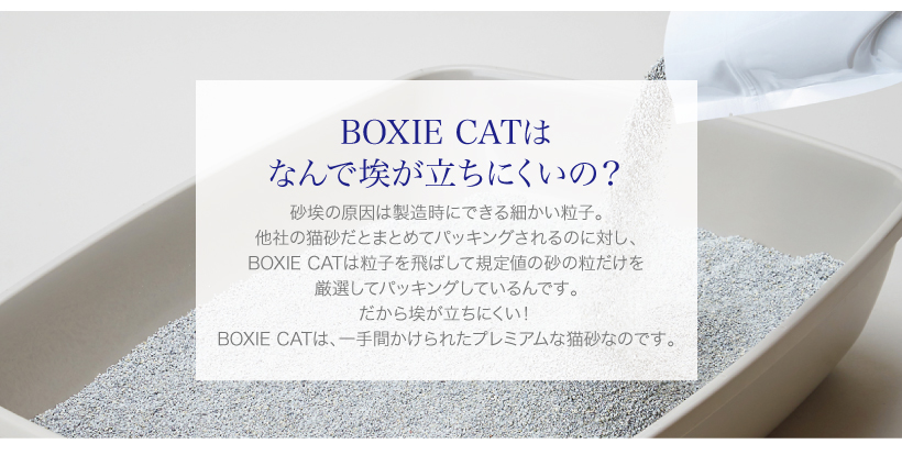 BOXIE CAT ブルー