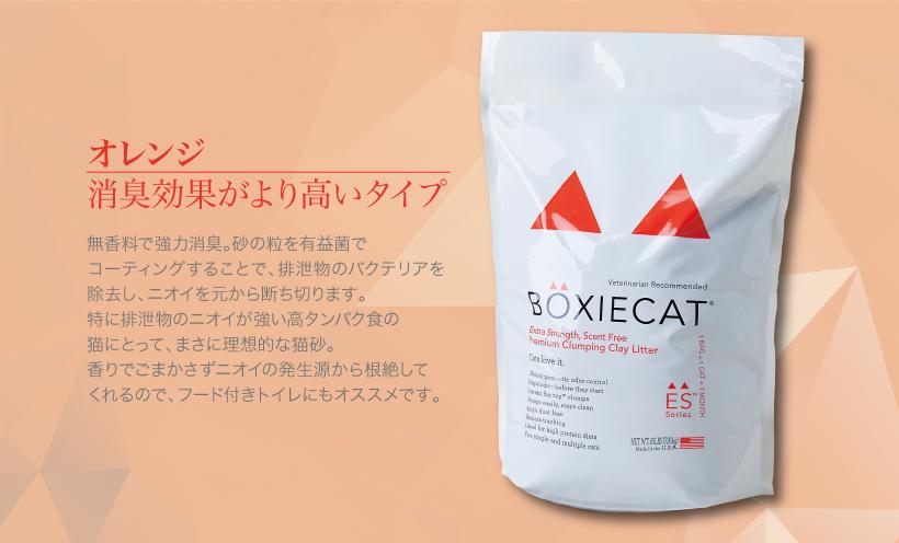 BOXIE CAT オレンジ