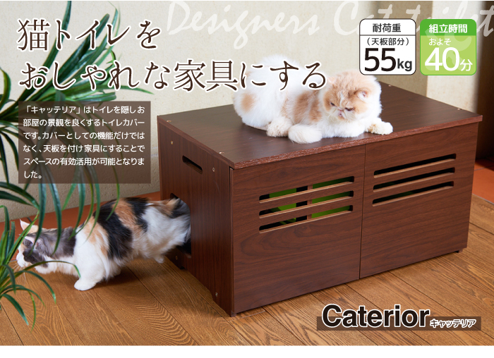 Caterior キャッテリア