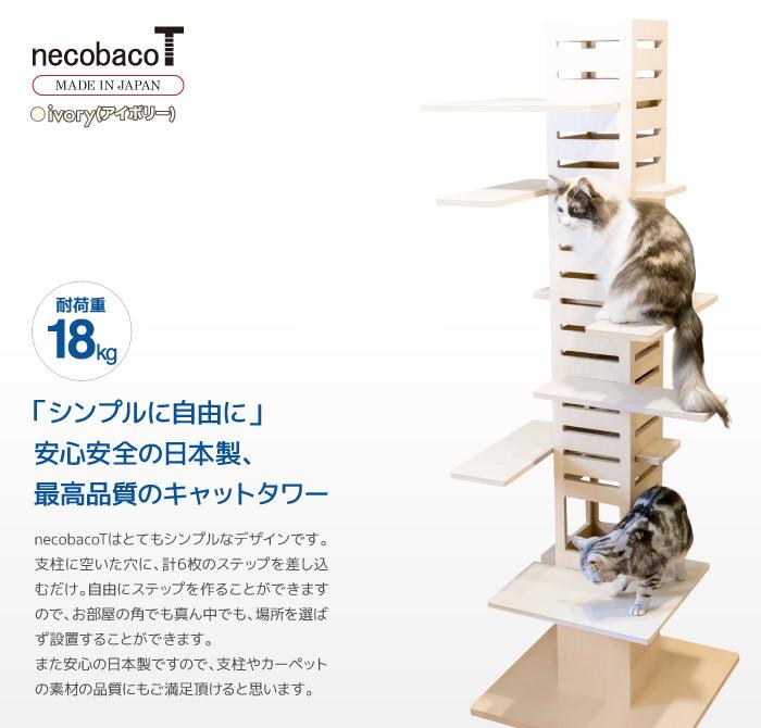 necobacoT ivory(アイボリー)