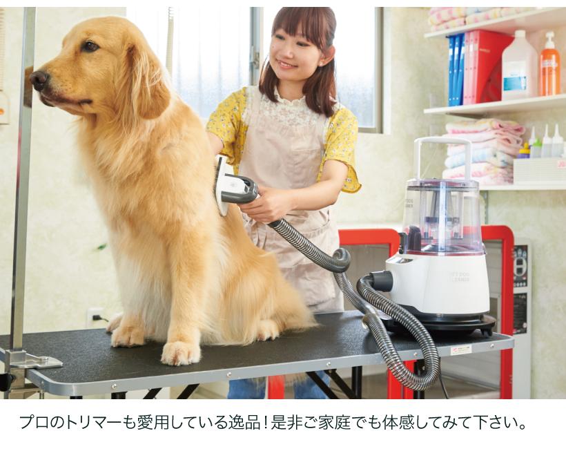 OFT DOG CLEANER